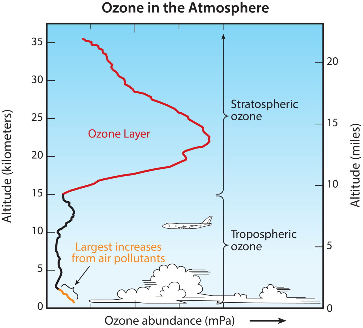 Vertical ozone distribution